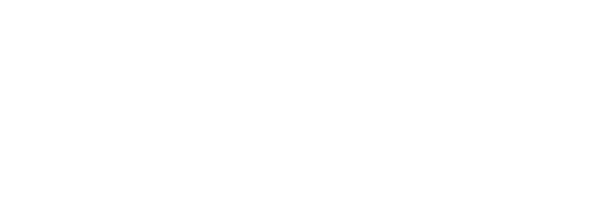 VLF Consulting logo